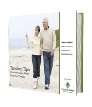 traveling-tips-vg-ebook.png